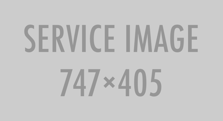 service-747×405.png